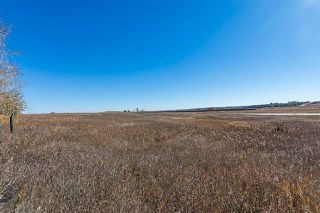 Photo 20: 16066 261 Avenue E: Rural Foothills County Land for sale : MLS®# C4277926