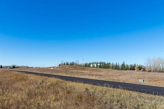 Photo 6: 16066 261 Avenue E: Rural Foothills County Land for sale : MLS®# C4277926