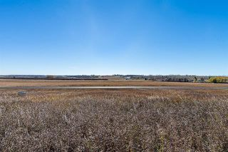 Photo 12: 16066 261 Avenue E: Rural Foothills County Land for sale : MLS®# C4277926