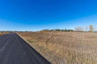 Photo 3: 16066 261 Avenue E: Rural Foothills County Land for sale : MLS®# C4277926