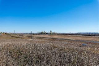 Photo 8: 16066 261 Avenue E: Rural Foothills County Land for sale : MLS®# C4277926
