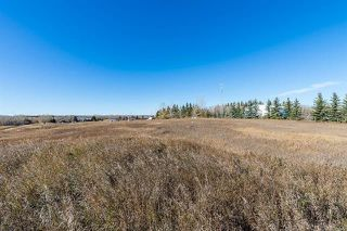 Photo 9: 16066 261 Avenue E: Rural Foothills County Land for sale : MLS®# C4277926