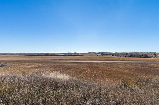 Photo 15: 16066 261 Avenue E: Rural Foothills County Land for sale : MLS®# C4277926