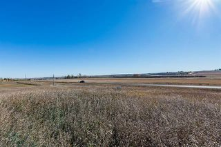 Photo 11: 16066 261 Avenue E: Rural Foothills County Land for sale : MLS®# C4277926