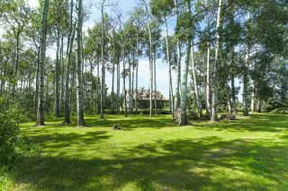 Photo 45: 2563 TWP 493: Rural Leduc County House for sale : MLS®# E4194338