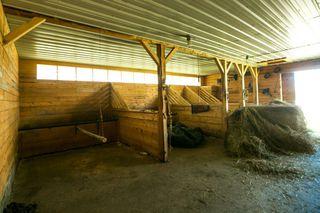 Photo 42: 2563 TWP 493: Rural Leduc County House for sale : MLS®# E4194338