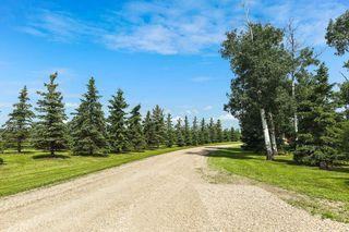 Photo 8: 2563 TWP 493: Rural Leduc County House for sale : MLS®# E4194338