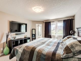 Photo 20: 220 HILLCREST Drive SW: Airdrie Detached for sale : MLS®# A1018720
