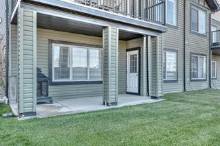 Photo 46: 172 SPRINGMERE Grove: Chestermere Duplex for sale : MLS®# A1030955