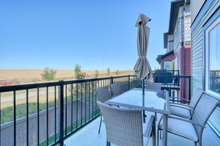 Photo 43: 172 SPRINGMERE Grove: Chestermere Duplex for sale : MLS®# A1030955