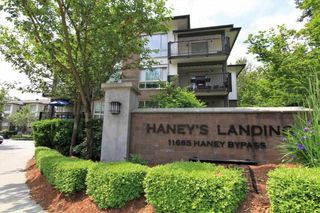 """Photo 16: 213 11665 HANEY Bypass in Maple Ridge: West Central Condo for sale in """"HANEY'S LANDING"""" : MLS®# R2418876"""