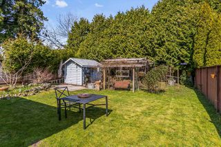Photo 17: 20491 118 Avenue in Maple Ridge: Southwest Maple Ridge House for sale : MLS®# R2449593