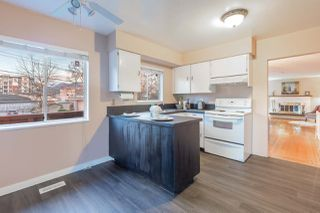 Photo 11: 2148 HAWTHORNE Avenue in Port Coquitlam: Central Pt Coquitlam House for sale : MLS®# R2527930