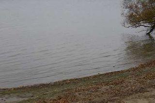 Photo 5: 9 Ridge Avenue in Lagoon City: House (Bungalow) for sale (X17: ANTEN MILLS)  : MLS®# X1732890
