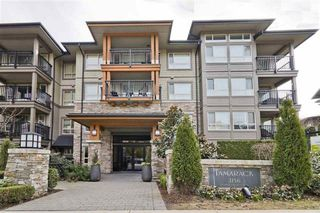 "Photo 1: 508 3156 DAYANEE SPRINGS Boulevard in Coquitlam: Westwood Plateau Condo for sale in ""TAMARACK"" : MLS®# R2392175"