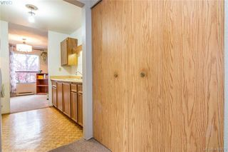 Photo 15: 201 290 Regina Ave in VICTORIA: SW Tillicum Condo Apartment for sale (Saanich West)  : MLS®# 829254