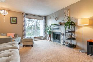 Photo 6: 201 290 Regina Ave in VICTORIA: SW Tillicum Condo Apartment for sale (Saanich West)  : MLS®# 829254