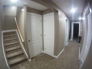 Photo 21: 15110 43 Street in Edmonton: Zone 02 House for sale : MLS®# E4190500
