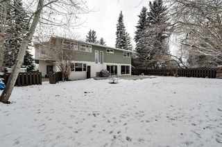 Photo 46: 192 QUESNELL Crescent in Edmonton: Zone 22 House for sale : MLS®# E4195385