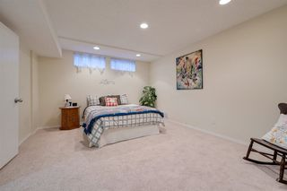Photo 38: 192 QUESNELL Crescent in Edmonton: Zone 22 House for sale : MLS®# E4195385