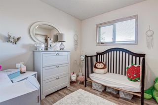 Photo 20: 314 Nelson Road: Carseland Detached for sale : MLS®# A1040058