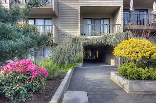 "Photo 8: 209-2125 W 2nd Ave in Vancouver: Kitsilano Condo for sale in ""Sunny Lodge"" (Vancouver West)"