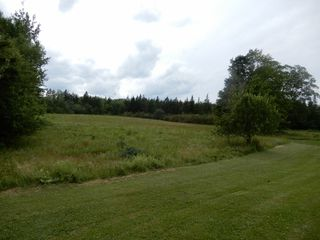 Photo 8: 235 Stewart Road in Rogers Hill: 108-Rural Pictou County Residential for sale (Northern Region)  : MLS®# 201917923