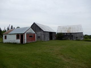 Photo 6: 235 Stewart Road in Rogers Hill: 108-Rural Pictou County Residential for sale (Northern Region)  : MLS®# 201917923