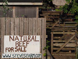 "Photo 62: 11120 6TH Avenue in Richmond: Steveston Village House for sale in ""Historic Steveston Village"" : MLS®# R2404732"