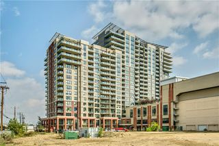 Photo 27: 514 8710 HORTON Road SW in Calgary: Haysboro Apartment for sale : MLS®# C4301610