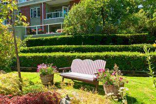Photo 10: 210 2020 CEDAR VILLAGE Crescent in North Vancouver: Westlynn Condo for sale : MLS®# R2482683