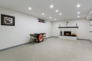 Photo 31: 639 WILLESDEN Drive SE in Calgary: Willow Park Detached for sale : MLS®# A1041833