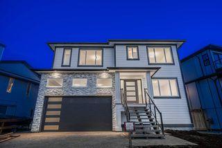 Main Photo: 20180 STANTON Avenue in Maple Ridge: Southwest Maple Ridge House for sale : MLS®# R2469592