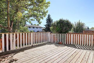 Photo 38: 210 EDGEDALE Place NW in Calgary: Edgemont Semi Detached for sale : MLS®# A1032699