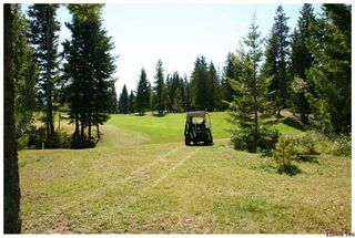 Photo 41: 2714 Golf Course Drive in Blind Bay: Golf Course Drive Residential Detached for sale : MLS®# 10034626