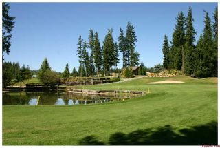 Photo 42: 2714 Golf Course Drive in Blind Bay: Golf Course Drive Residential Detached for sale : MLS®# 10034626