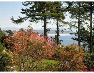 Photo 4: Ocean Front Estate Home - 12990 13TH AV in White Rock: House for sale : MLS®# Ocean Front Estate Home