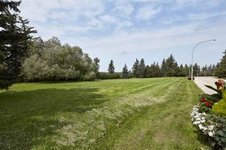 Photo 9: 8715 SASKATCHEWAN Drive in Edmonton: Zone 15 Vacant Lot for sale : MLS®# E4168126