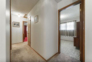 Photo 14: 4108 114 Street in Edmonton: Zone 16 House for sale : MLS®# E4170626