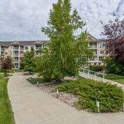 Photo 25: 325 2741 55 Street in Edmonton: Zone 29 Condo for sale : MLS®# E4186301