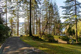 Photo 7: 1656 YMCA Road in Gibsons: Gibsons & Area House for sale (Sunshine Coast)  : MLS®# R2447389