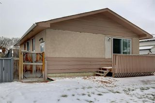 Photo 28: 3050 30A Street SE in Calgary: Dover Detached for sale : MLS®# A1050632