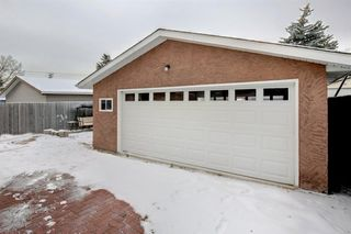 Photo 30: 3050 30A Street SE in Calgary: Dover Detached for sale : MLS®# A1050632