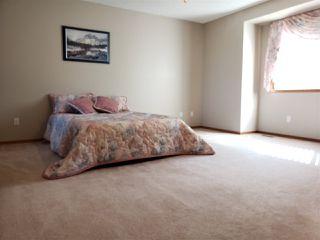 Photo 15: 10415 175 Avenue in Edmonton: Zone 27 House for sale : MLS®# E4171128