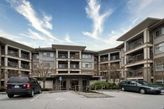 "Photo 1: 216 12248 224 Street in Maple Ridge: East Central Condo for sale in ""The Urbano"" : MLS®# R2421916"