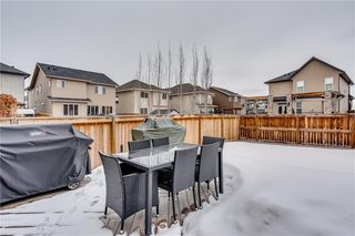 Photo 26: 14 CRANFORD Green SE in Calgary: Cranston Detached for sale : MLS®# C4291439
