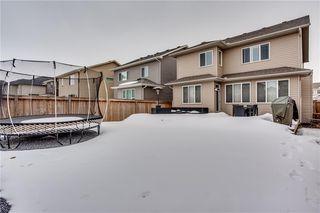 Photo 29: 14 CRANFORD Green SE in Calgary: Cranston Detached for sale : MLS®# C4291439
