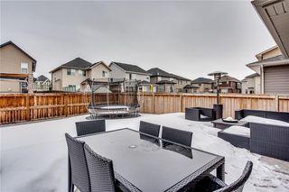 Photo 27: 14 CRANFORD Green SE in Calgary: Cranston Detached for sale : MLS®# C4291439