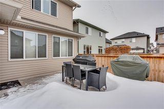 Photo 31: 14 CRANFORD Green SE in Calgary: Cranston Detached for sale : MLS®# C4291439
