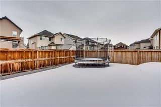 Photo 28: 14 CRANFORD Green SE in Calgary: Cranston Detached for sale : MLS®# C4291439